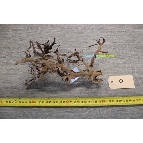 Aquascaping Twig 0
