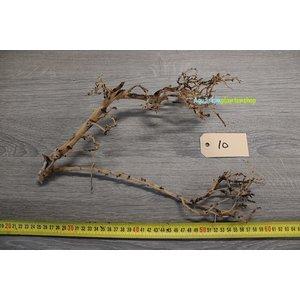 Aquascaping Twig 10