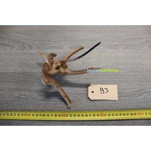 Spiderwood 93