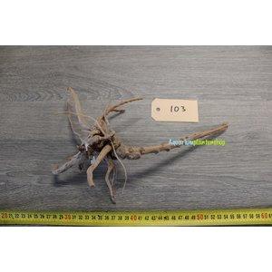 Spiderwood 103