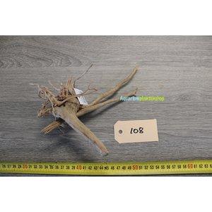 Spiderwood 108