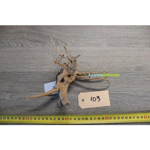 Spiderwood 109