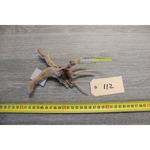 Spiderwood 112