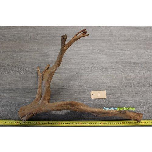 Spiderwood 1