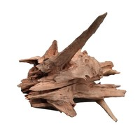 Corbo Root Extra Small 15-20 cm