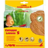 Sera Catappa Leaves S - 14 cm