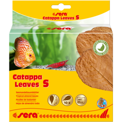 Sera Catappa Leaves S - 14 cm