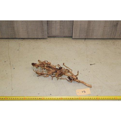 Aquascaping Twig 15