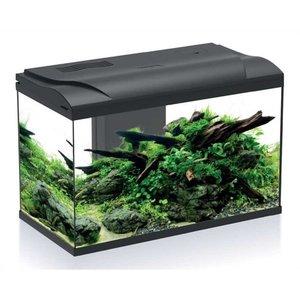 Hs Aqua Aquarium Platy 70 Bio