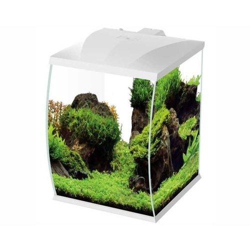 Hs Aqua Aquarium Belly 45