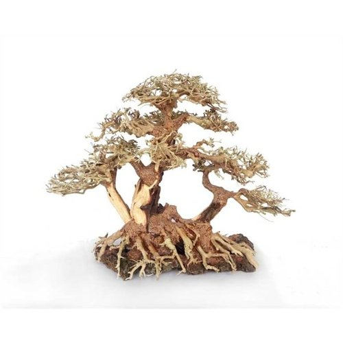 Hs Aqua Bonsai Wood With Rock M 25x18x30 cm