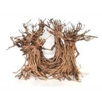 Hs Aqua Bonsai Dancing Wood M 25x22x32 cm