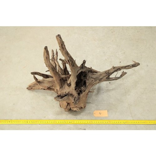 Corbo Root Large 4