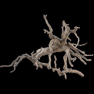 Sera Scaper Root