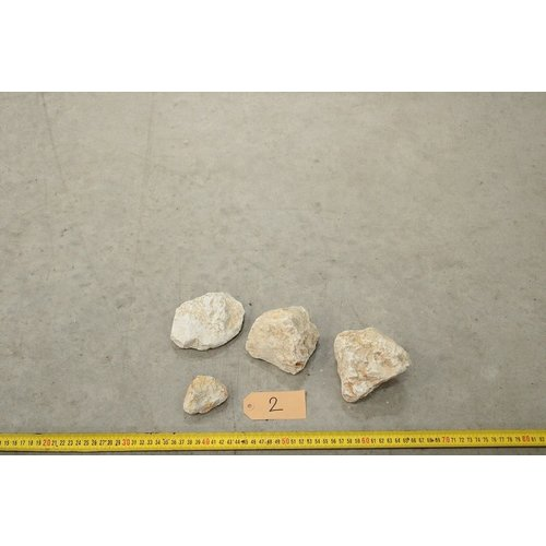 APS Yellow Rocks 2