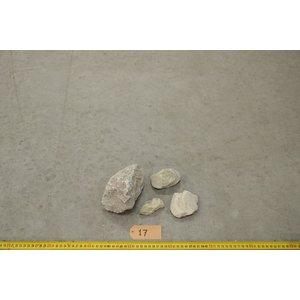 APS Yellow Rocks 17