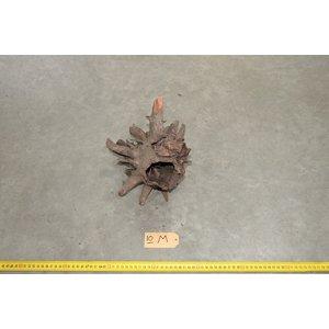 Corbo Root Medium 10