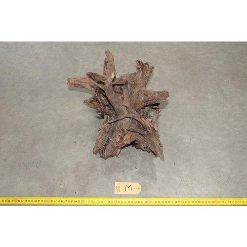 Corbo Root Medium 11
