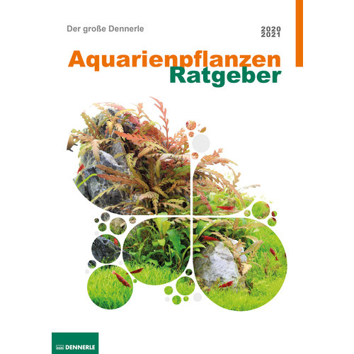 Dennerle Dennerle Aquarium Plants Guide 2020 (Engels)
