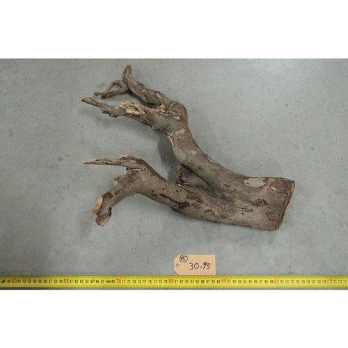 Talawa hout 15