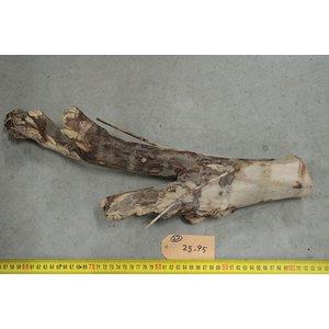 Talawa hout 22