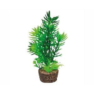 Hobby Hobby Plant Flora Stone 1