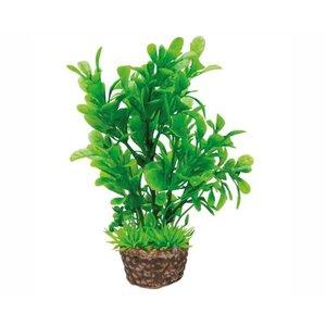 Hobby Hobby Plant Flora Stone 3