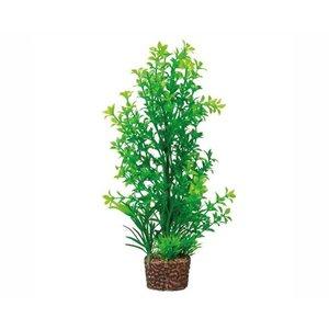 Hobby Hobby Plant Flora Stone 6