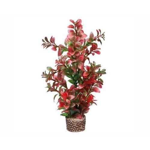 Hobby Hobby Plant Flora Stone 7