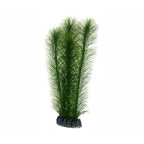 Hobby Hobby Plant Mayaca 25 cm