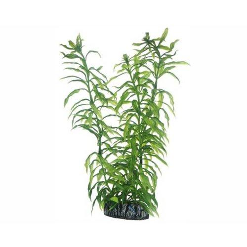 Hobby Hobby Plant Heteranthera 25 cm