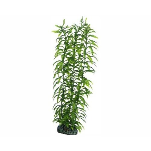 Hobby Hobby Plant Heteranthera 34 cm