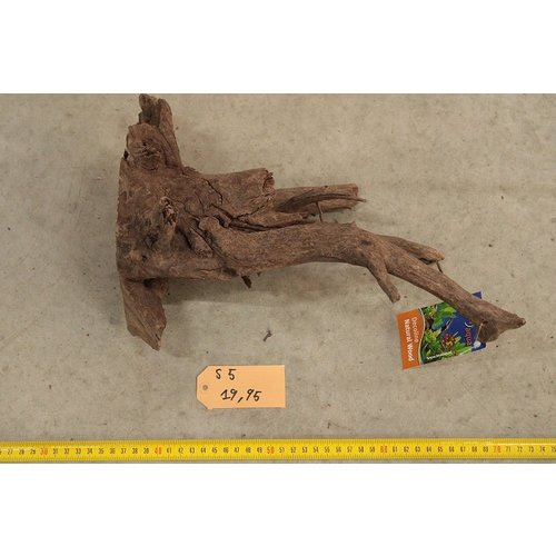 Corbo Root Small 5