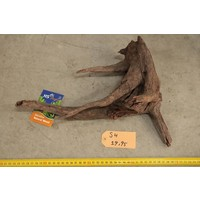 Corbo Root Small 4