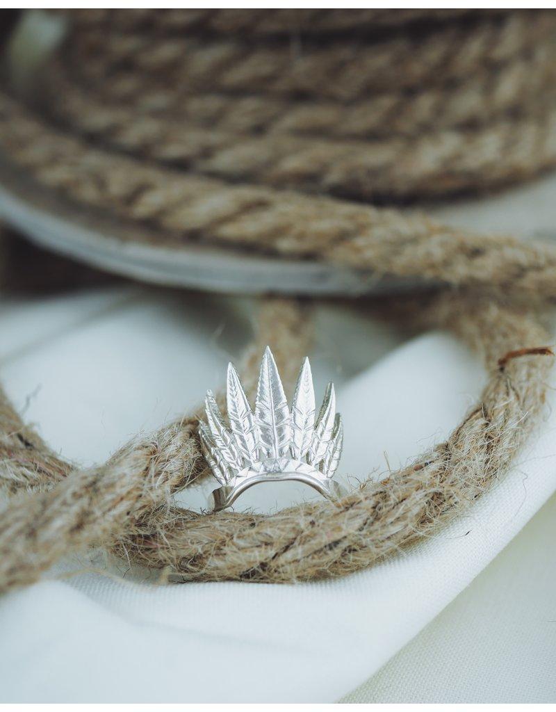 Shiness Lily
