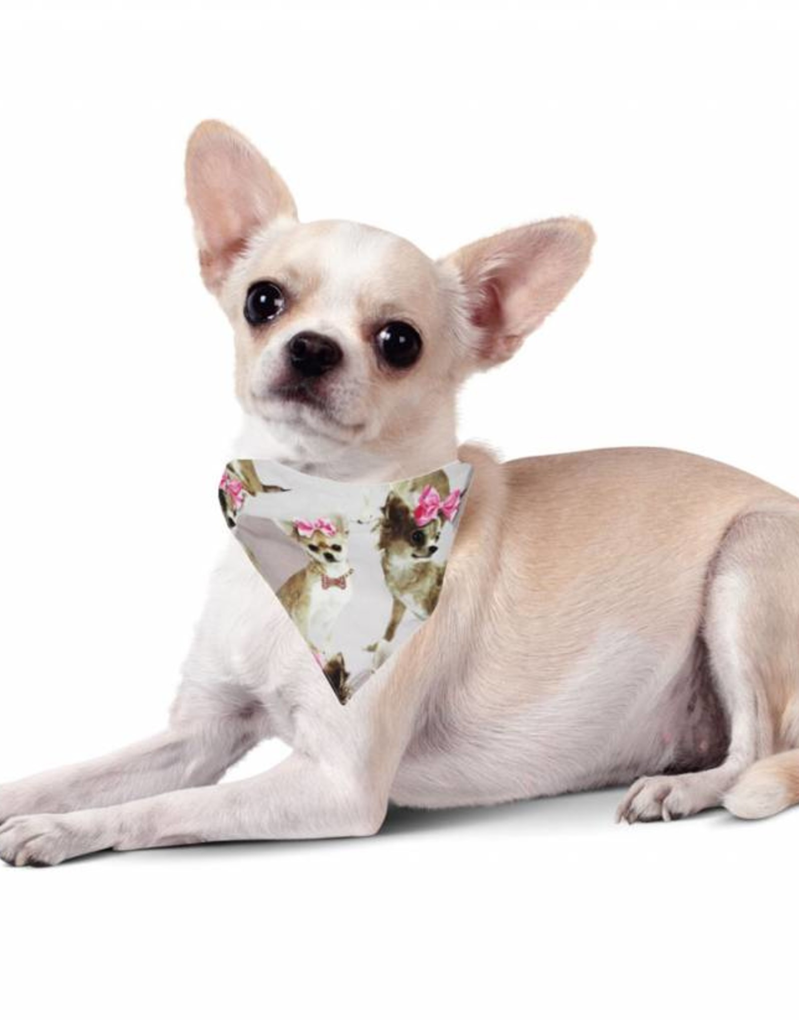 """Little Chic by TAVO Little Chic by TAVO Hunde-Halstuch """"PinkyBell"""""""
