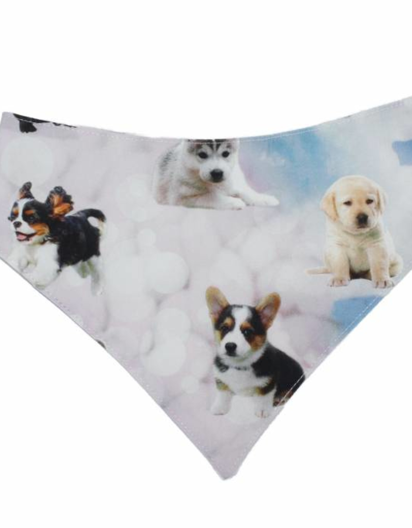 """Little Chic by TAVO Little Chic by TAVO Hunde-Halstuch """"Hundehimmel"""""""