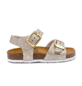PLAKTON sandaal goud croco