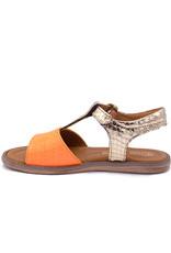 RONDINELLA RONDINELLA sandaal goud oranje