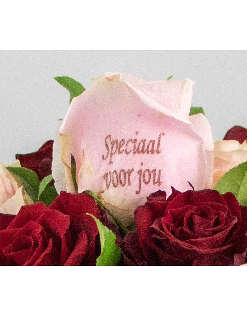 Magic Flowers Boeket 15 rozen - Rood/Roze - Speciaal voor jou