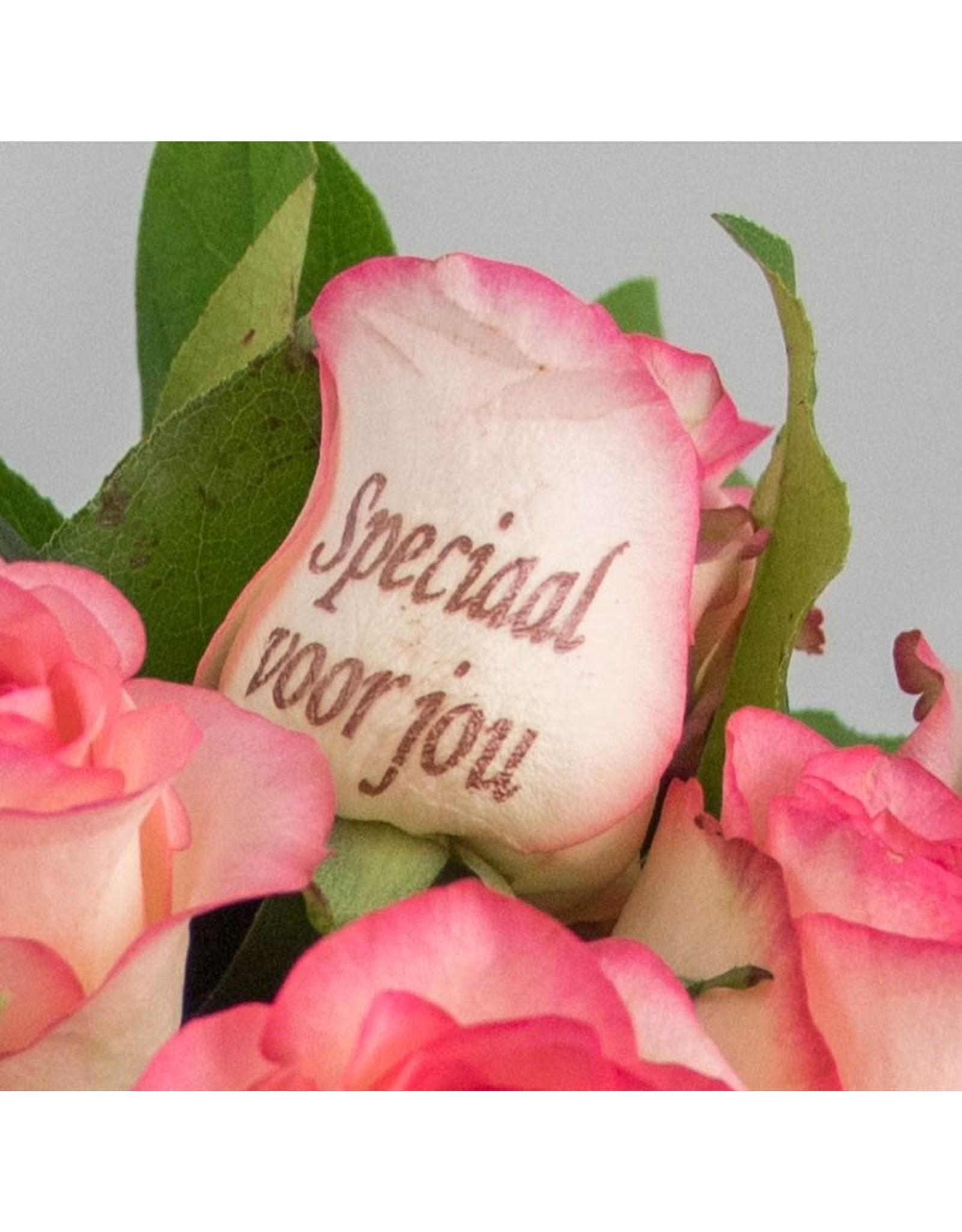 Magic Flowers Boeket 15 rozen - Wit/Roze - Speciaal voor jou