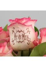 Magic Flowers Boeket 15 rozen - Wit/Roze - Mr&Mrs