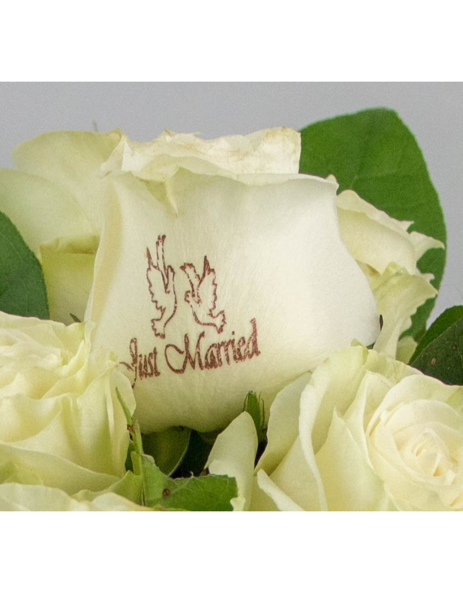 Magic Flowers Boeket 9 rozen - Wit - Just Married