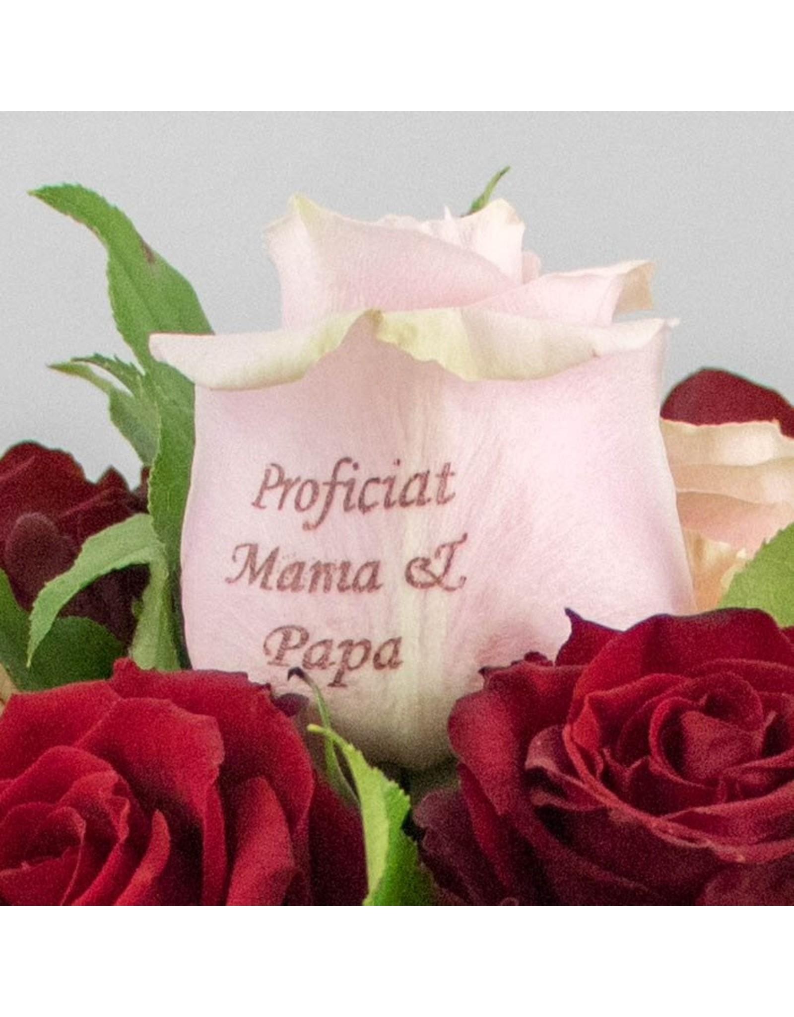 Magic Flowers Boeket 15 rozen - Rood/Roze - Proficiat Mama & Papa