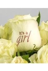 Magic Flowers Boeket 15 rozen - Wit - It's a Girl