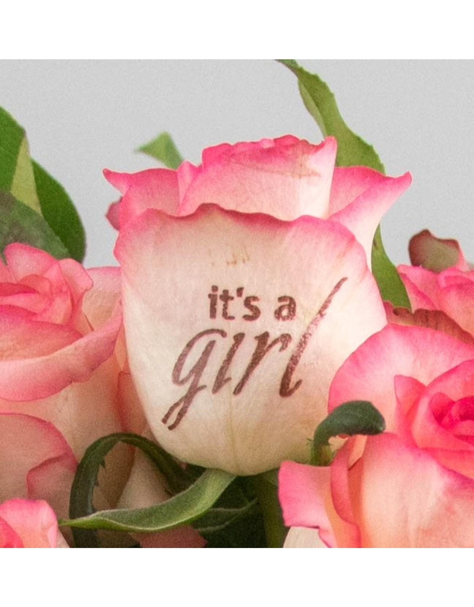 Magic Flowers Boeket 15 rozen - Wit/Roze - It's a Girl