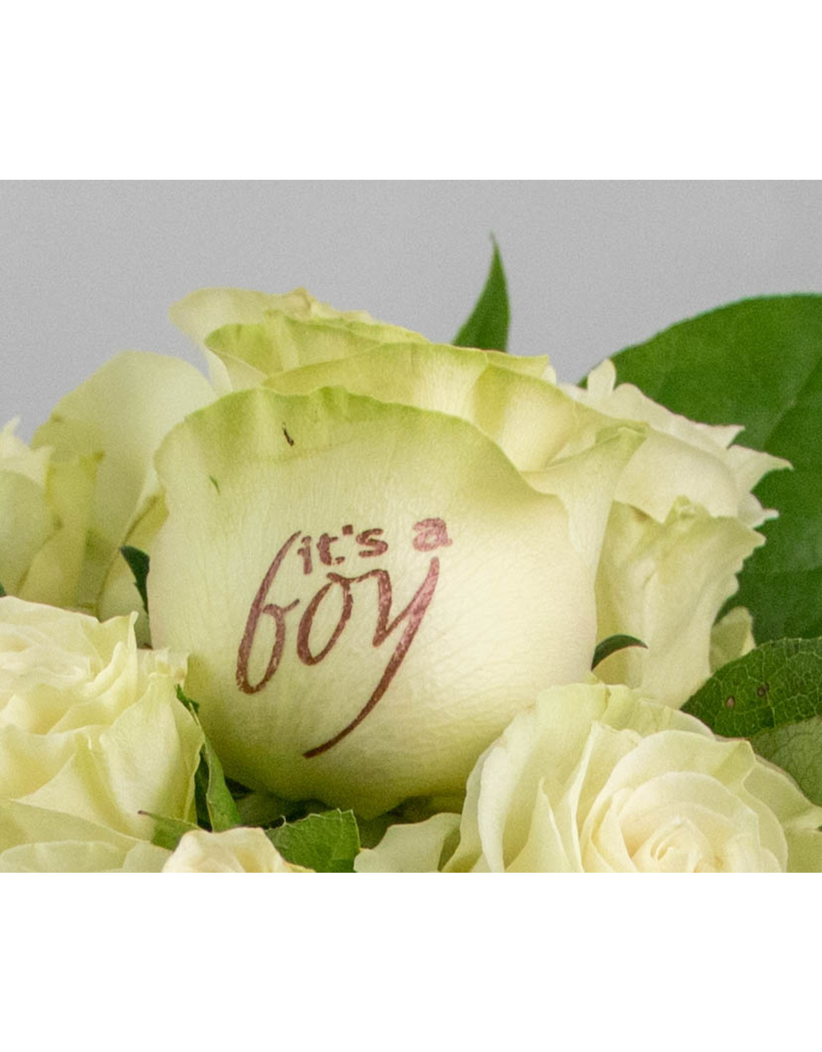 Magic Flowers Boeket 15 rozen - Wit - It's a Boy