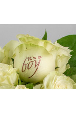 Magic Flowers Boeket 9 rozen - Wit - It's a Boy