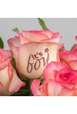 Magic Flowers Boeket 15 rozen - Wit/Roze - It's a Boy