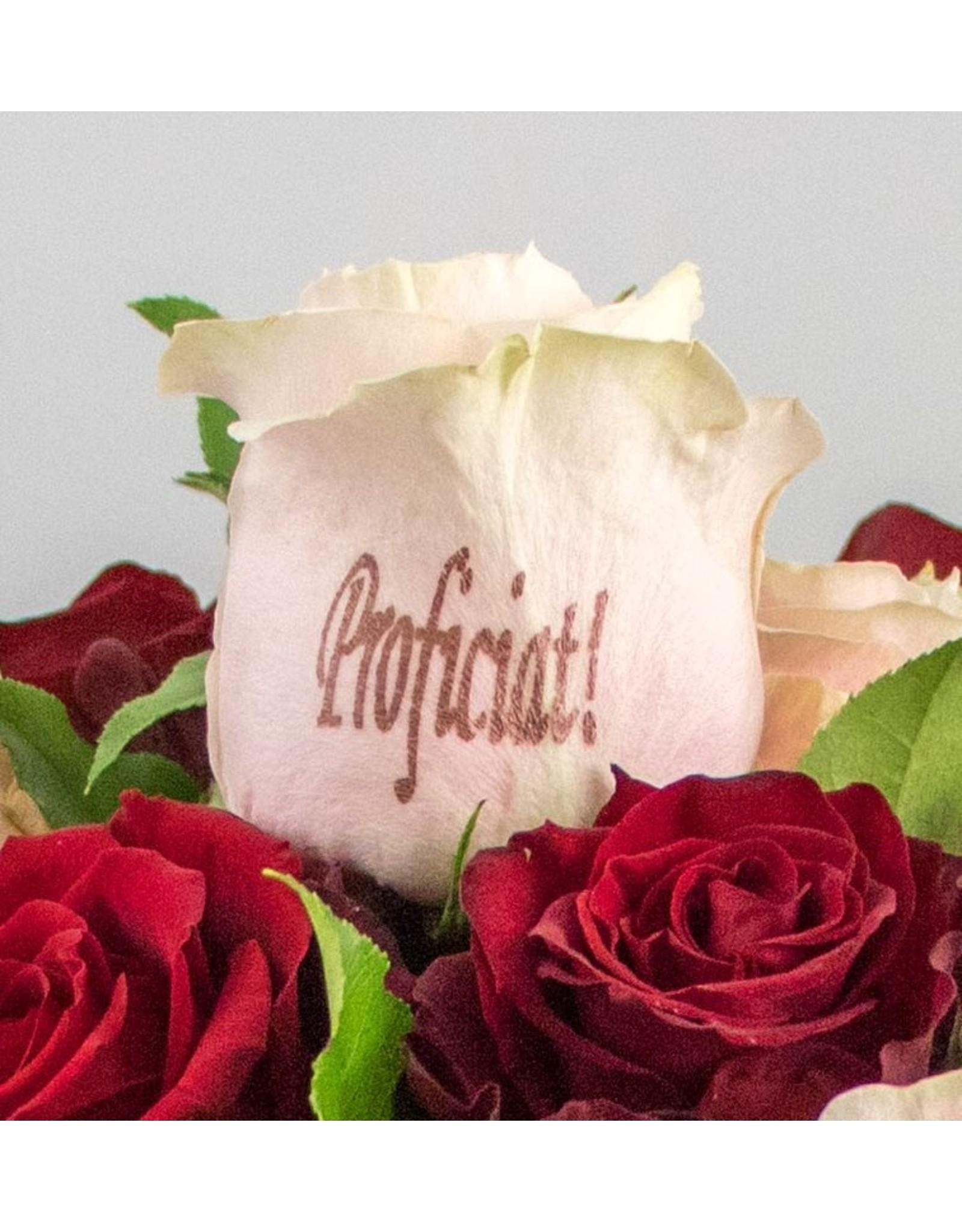 Magic Flowers Boeket 15 rozen - Rood/Roze - Proficiat